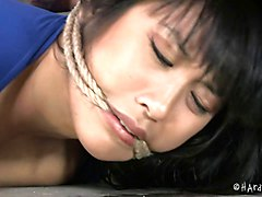 Thick Asian In Rope Bondage