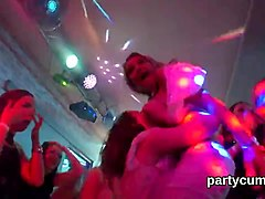 Foxy cuties get fully crazy and undressed at hardcore party
